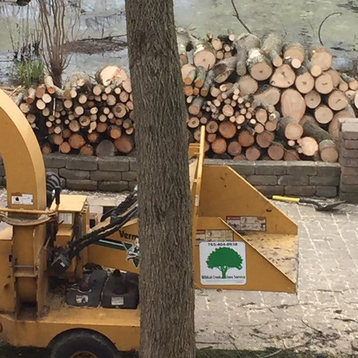 be ready to toast your marshmellows this fall with firewood from wildcat creek tree service lafayette IN