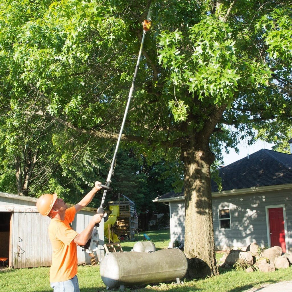 tree trimming and deadwooding in lafayette IN by the professional tree specialists at wildcat creek tree service