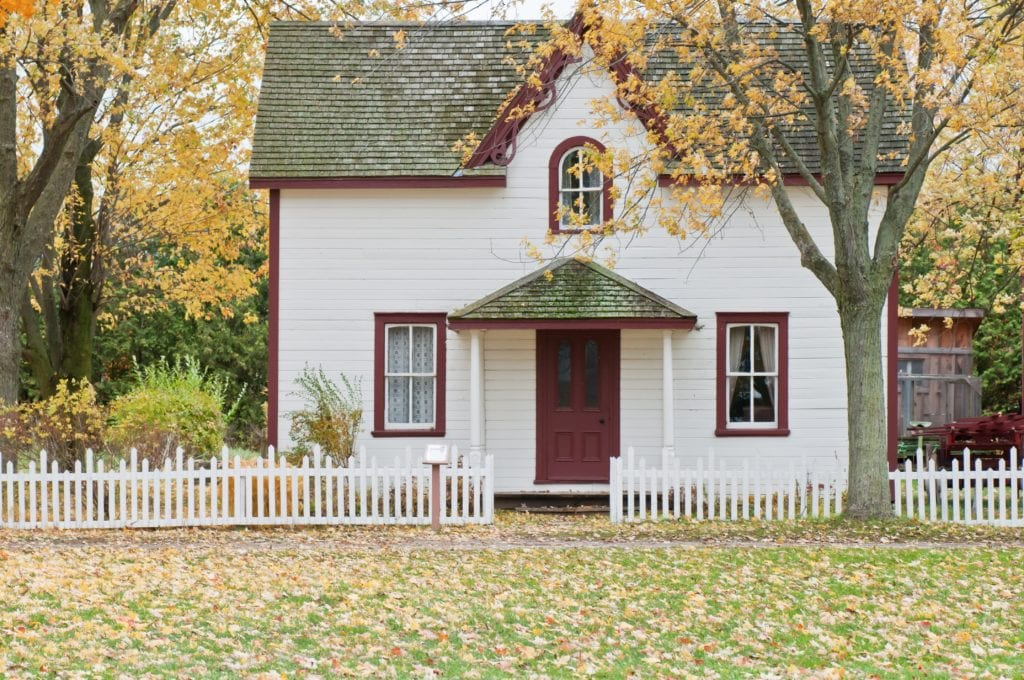 thinning your trees in lafayette indiana can help protect your property
